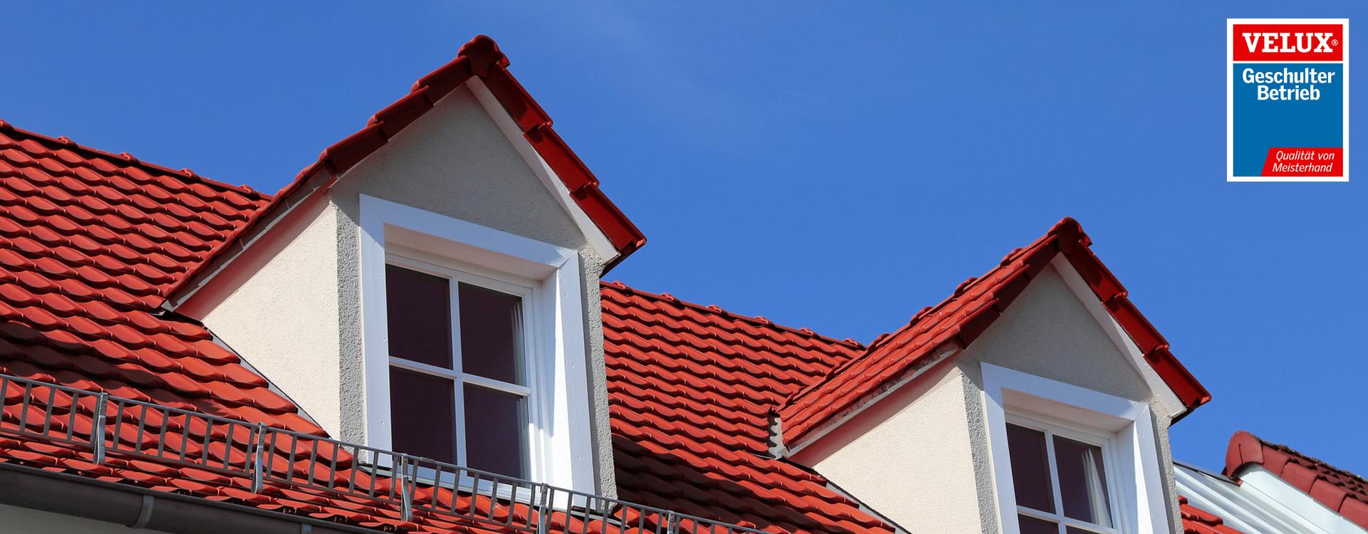 Dach mit Veluxlogo
